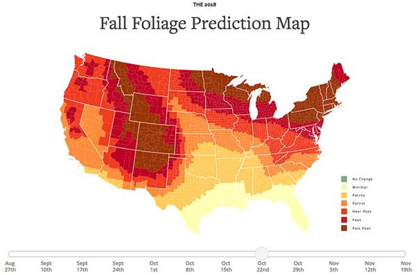 This Interactive Map Shows You the Best Days for Photographing Fall ...